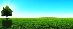 Les ventes de terrains à bâtir moins imposées