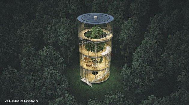 Écolo, une maison autour d'un arbre