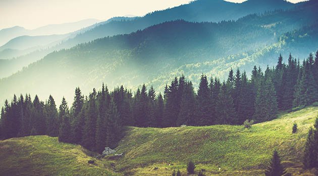 Du nouveau, là-haut, sur ma montagne