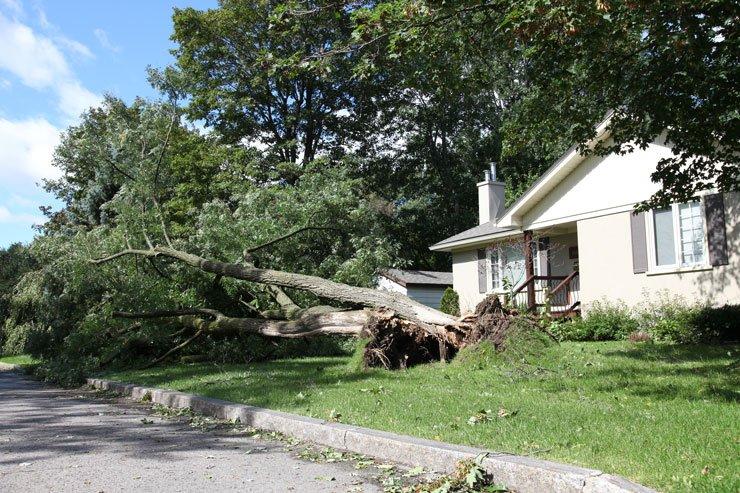 Après l'orage : quelle indemnisation ?