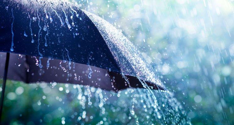 Récupérer l'eau de pluie - Ça coule de source !