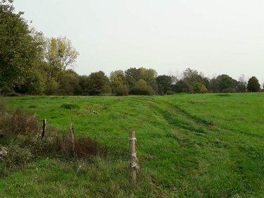 Achat Terrain De Loisirs Bois Etang Mayenne 53 Vente